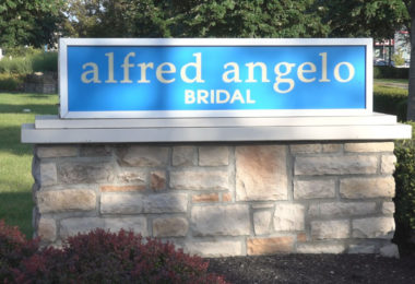 Alfred Angelo What Went Wrong?